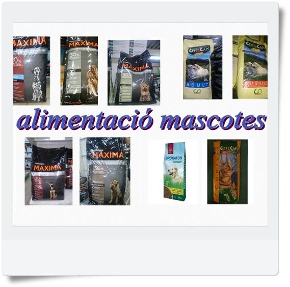pinsos photoscape alimentació mascotes