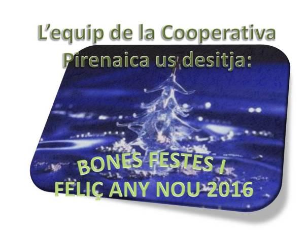 Bones festes (2015)