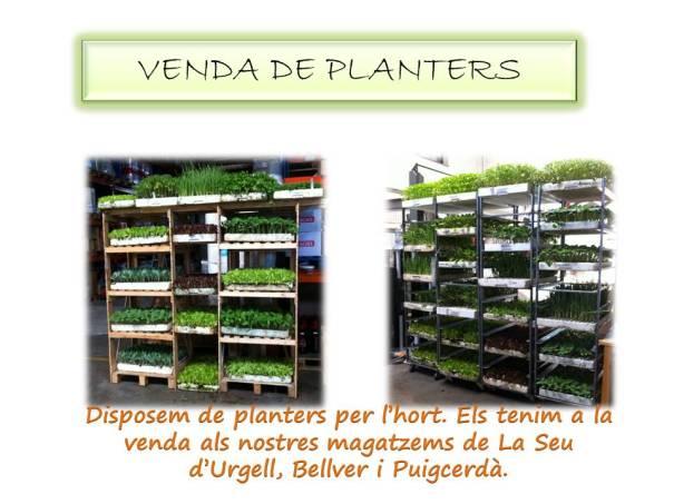 VENDA DE PLANTERS